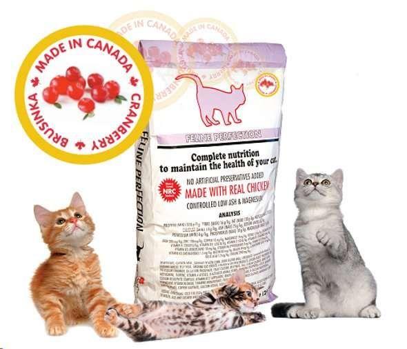 FELINE Perfection Adult Cat - kanadské kompletní krmivo pro kočky 12 kg